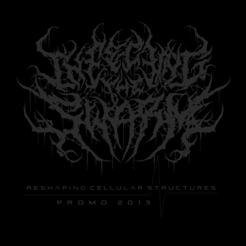 Infecting The Swarm - Reshaping Cellular Structures (Demo) (2013)
