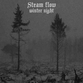 Steam flow - Winter Night (2013)