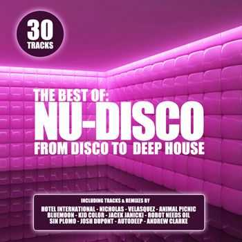 VA - The Best Of Nu Disco - From Disco To Deep House (2013)