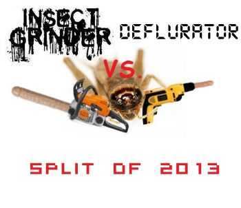 Insect Grinder & Deflurator - Split of 2013 Insect Grinder & Deflurator (2013)