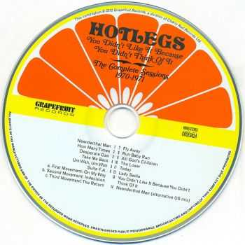 Hotlegs - You Didn't Like It Because You Didn't Think Of It: The Complete Sessions 1970-1971 (2012)