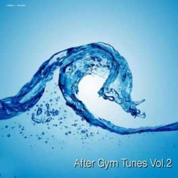 VA - After Gym Tunes Vol. 2 (2013) flac,mp3