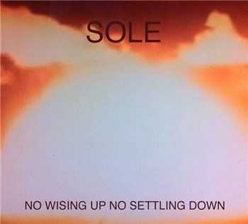 Sole - No Wising Up No Settling (2013)