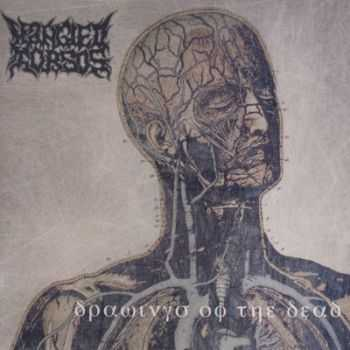Mangled Torsos - Drawings Of The Dead (1994) [Reissue 2011]