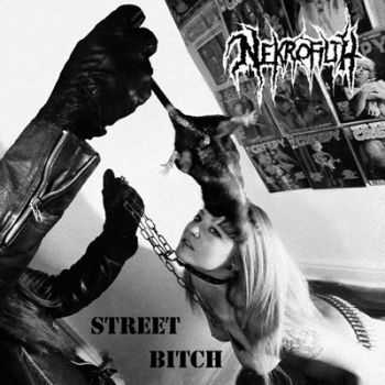 Nekrofilth - Street Bitch [ep] (2013)