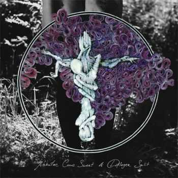 Nebulae Come Sweet & Difleger - Split (2013)