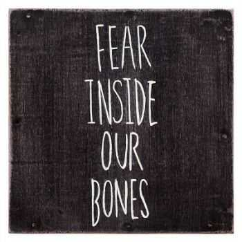 The Almost - Fear Inside Our Bones (2013)