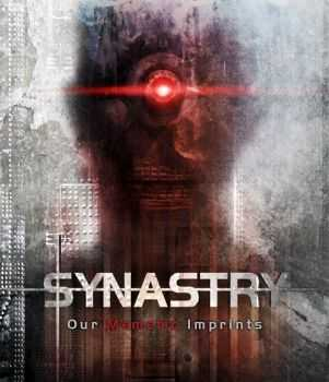 Synastry - Our Memetic Imprints (2012)