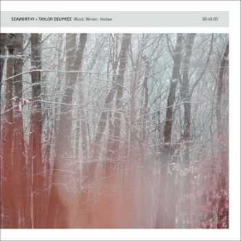 Seaworthy & Taylor Deupree - Wood Winter Hollow (2013)
