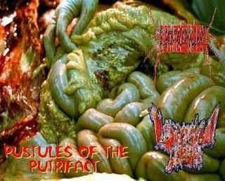 Black Mold Phallanx & Lacerated Tissue - Pustules Of The Putrifact (Split) (2008)