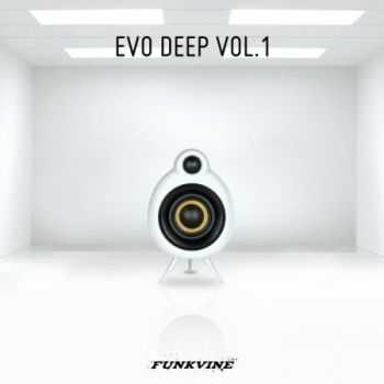 VA - Evo Deep Volume 1 (2013)