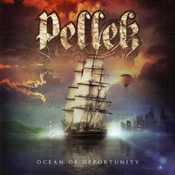 PelleK - Ocean Of Opportunity (2013) (Lossless) + MP3