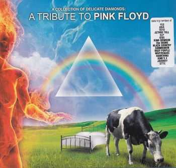 VA - A Collection of Delicate Diamonds: A Tribute to Pink Floyd (2011) HQ