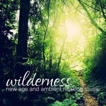 VA - Wilderness New Age and Ambient Relaxing Music (2013)