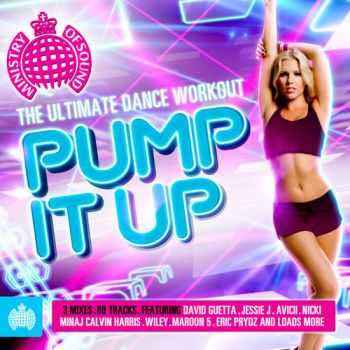 VA - Ministry of Sound - Pump It Up: The Ultimate Dance Workout (2012) flac