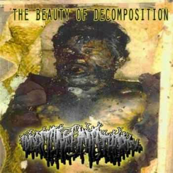 Hydropneumothorax - The Beauty Of Decomposition (2013)