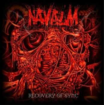 Navalm - Recovery Of Sync (2013)