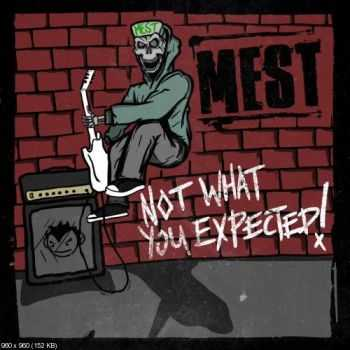 Mest  - - Not What You Expected  ((2013))