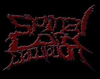 Spinal Cord Ejaculation - Never Ending Shit (2013)