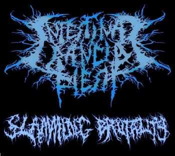 Intestinal Rancid Flesh - Demo (2013)