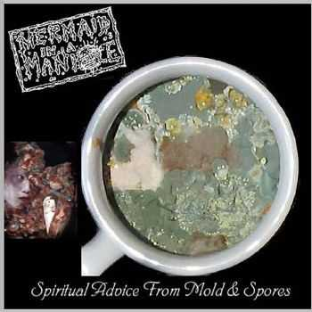 Mermaid In A Manhole - Spiritual Advice From Mold And Spores (2002)