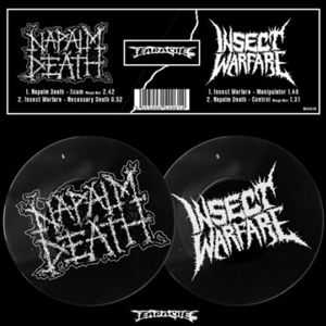 Napalm Death & Insect Warfare - Split (2013)