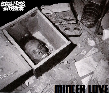 SEAGULLNEEDSAFRIEND - MINCER LOVE EP (2014)