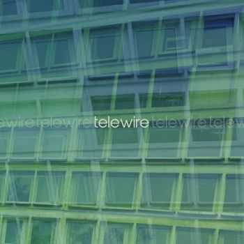The Telewire - Like Everything (2014)