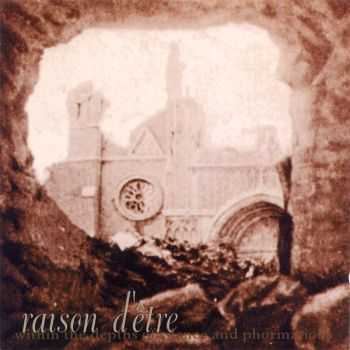Raison D'Être - Within The Depths Of Silence And Phormations (1995)