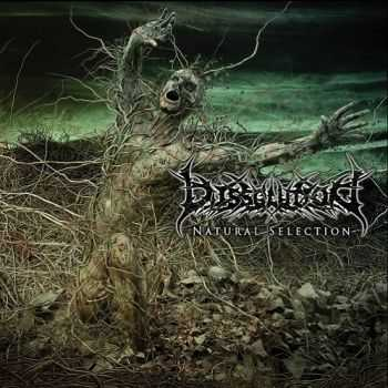 Dissolution - Natural Selection (2014)