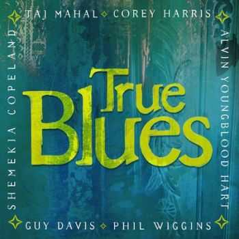 Corey Harris, Guy Davis and Alvin Youngblood Hart - True Blues 2013