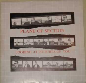 Plane of Section - Looking at Pictures of You  (1984)