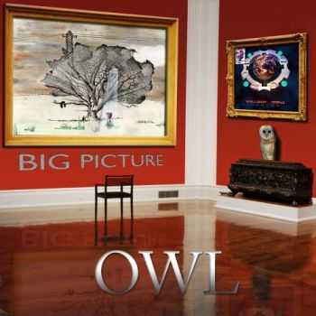 Owl - Big Picture (2014)
