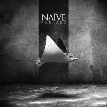 NAIVE - Remixes (2014)