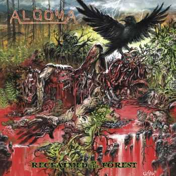 Algoma - Reclaimed by the Forest (2014)