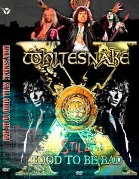 Whitesnake - Still Good To Be Bad 2011 (DVD5)