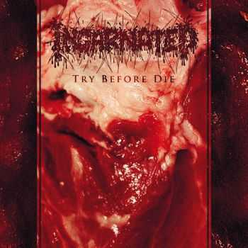 Incarnated - Try Before Die (2014)