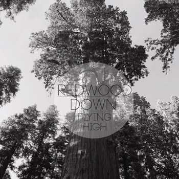 Redwood Down - Flying High (2015)
