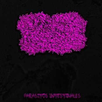 Úlcera - Parásitos Intestinales (EP) (2014)