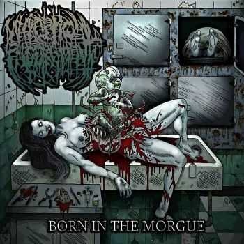 Necroptic Engorgement - Born In The Morgue (2014)