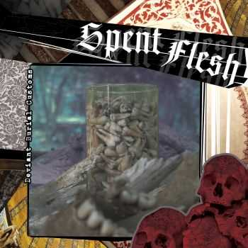 Spent Flesh - Deviant Burial Customs (2015)