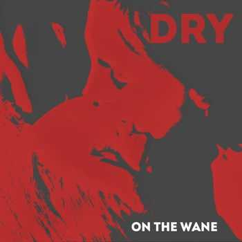 On The Wane - DRY (2014)