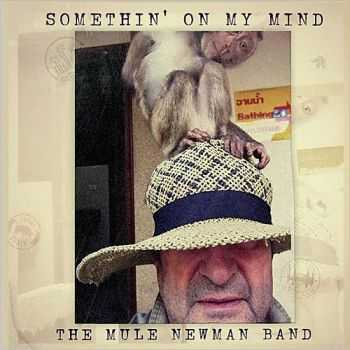 The Mule Newman Band - Somethin' On My Mind 2015