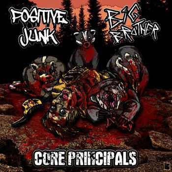 Big Brother / Positive Junk - Core Principals [split] (2015)