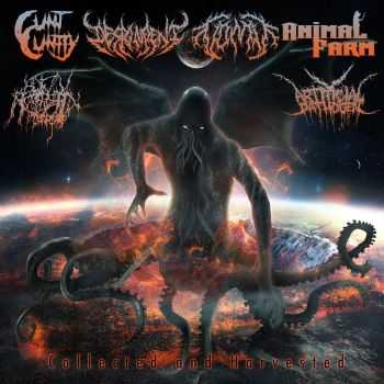 Despondent & Artificial Pathogen & AnimalFarm & Cunt Cuntly & Botfly Infestation & Vomit - Collected And Harvested [Split] (2015)