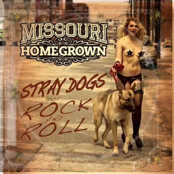 Missouri Homegrown - Stray Dogs Of Rock And Roll (2015)