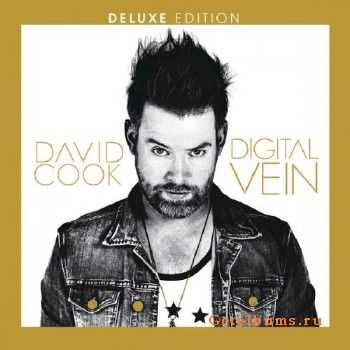 David Cook - Digital Vein (2015)