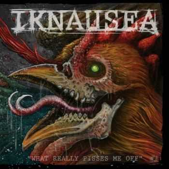 Iknausea - What Really Pisses Me Off (2015)