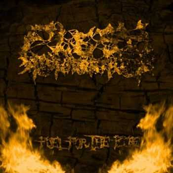 Flesh Incineration - Fuel For The Fire [ep] (2015)