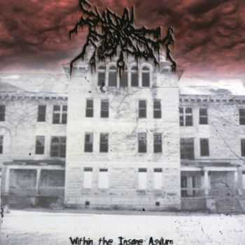Suicidal Nihilism - Within The Insane Asylum (2011) (LOSSLESS)